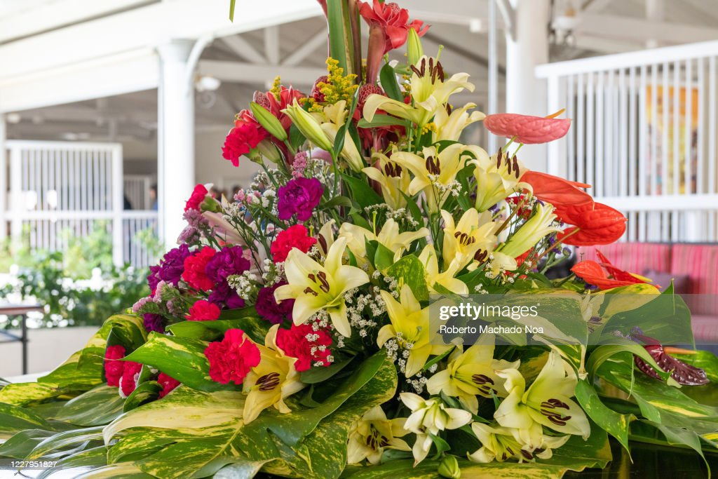 Flower Arrangement In The Lobby Or Reception Of The Las Dunas Hotel News Photo Getty Images