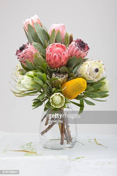 Flower arrangement of Protea's