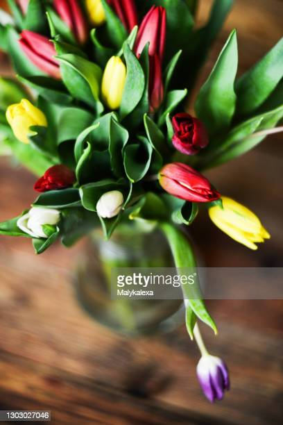 flower background bouquet colorful tulips glass
