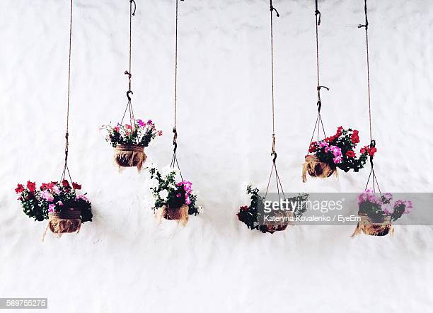 flower baskets hanging against wall - hanging basket stock pictures, royalty-free photos & images
