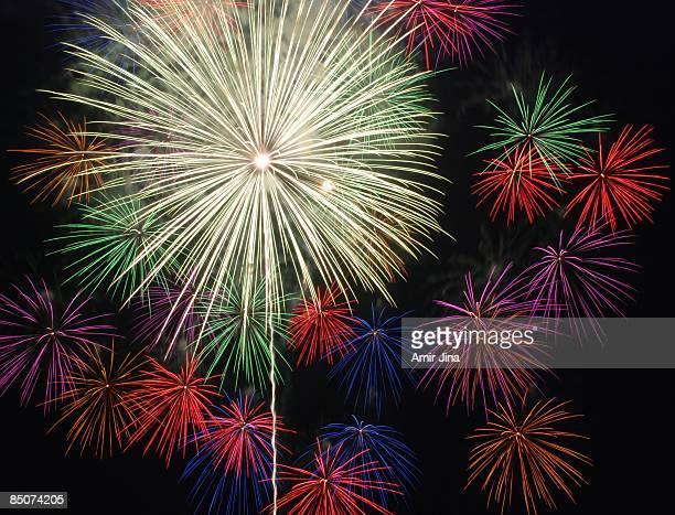 Flower Bed - Fireworks at Japanese summer festival