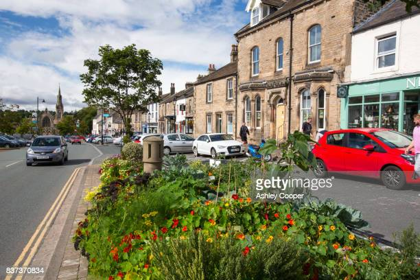 a flower bed on the main street in barnard castle, county durham, uk. - barnard castle stock pictures, royalty-free photos & images