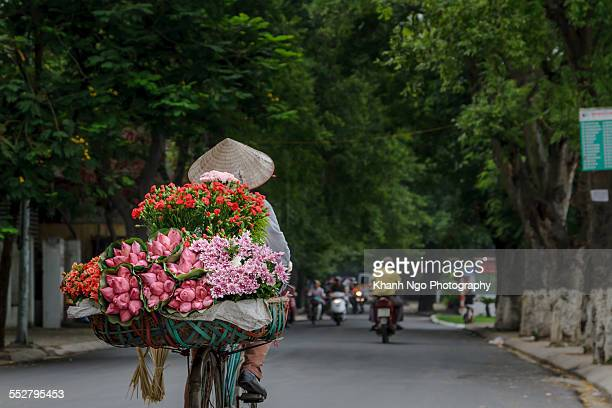 flower bike-shop - khanh ngo stock pictures, royalty-free photos & images