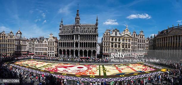 Flower Carpet Brussels 2016 Panorama