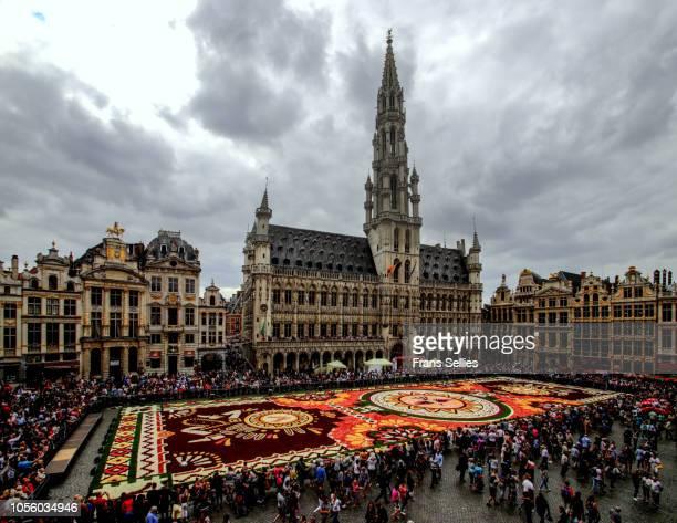 flower carpet, grand place, brussels, belgium - região de bruxelas capital imagens e fotografias de stock