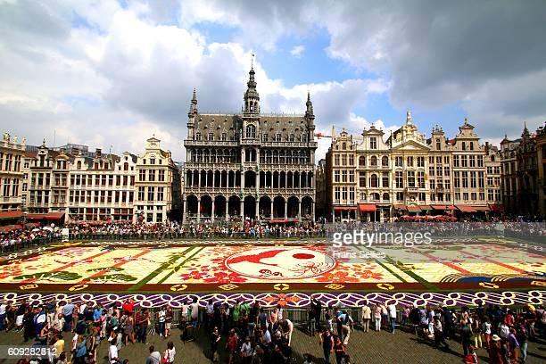 Flower Carpet, Grand Place, Brussels, Belgium