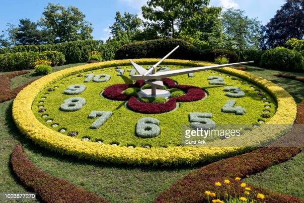 flower clock in english garden, geneva, switzerland. - geneva switzerland stock pictures, royalty-free photos & images