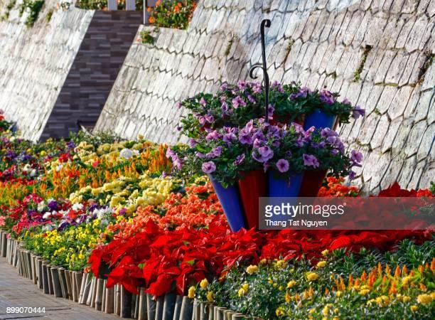 Flower decoration on street