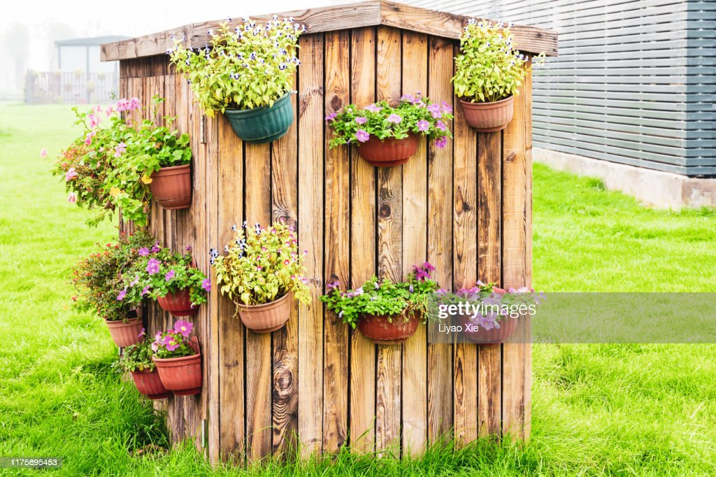 Flower decoration : Stock Photo
