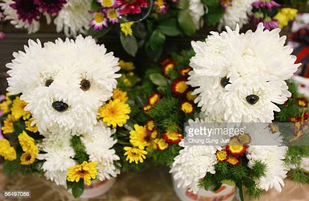 Flower Displays in the shape of dogs are pictured at a department store on December 29 2005 in Seoul South Korea The year of 2006 is the year of the...
