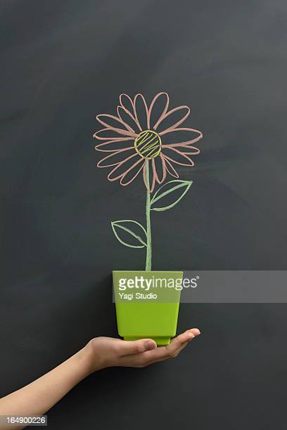 Flower drawn on the blackboard