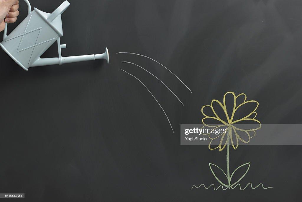 Flower drawn on the blackboard : Foto de stock