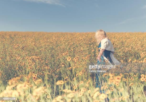 Flower Field Beauty