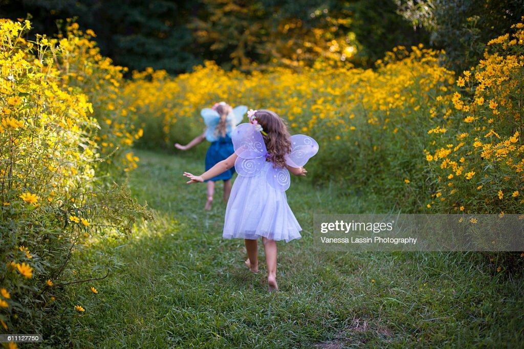 Flower Field Flight : Stock Photo