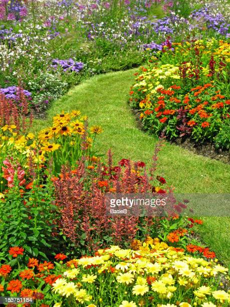 Flower garden in summer