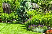 A flower garden in the backyard