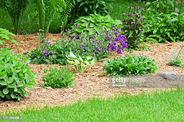 Jardin fleuri avec Copeau de bois du paillis
