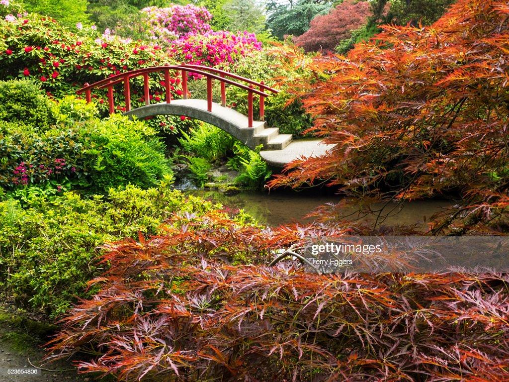 Flower Gardens And Moon Bridge In Kubota Gardens Stock Photo | Getty ...