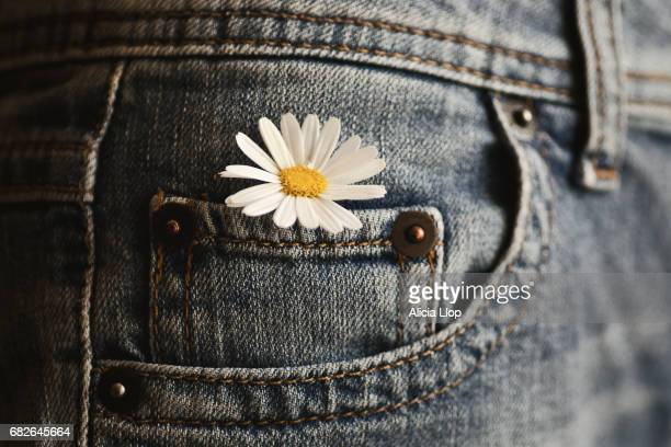 flower in a jeans pocket - pocket stock pictures, royalty-free photos & images