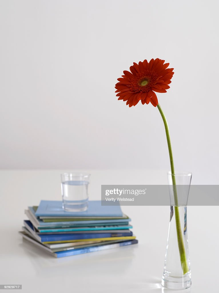 Flower In A Vase Next To A Stack Of Books And A Drink Stock Photo