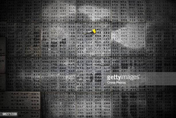 A flower is left on a wall engraved with victims names at the Memorial Hall of the Victims in the Nanjing Massacre as tens of thousands of people...