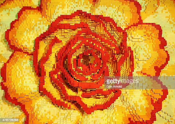 A flower is seen at the Brick Man Experience The Complete Collection by Ryan McNaught made entirely of LEGO bricks at Sydney Town Hall on June 27...