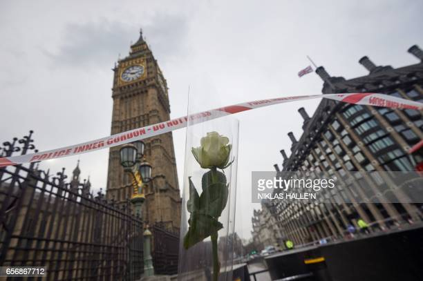 TOPSHOT A flower left in tribute to the victims of the March 22 terror attack is seen next to the Palace of Westminster that houses the Houses of...