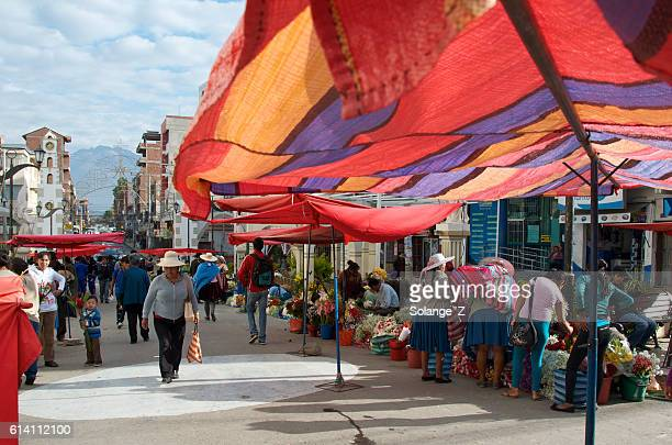 flower market at our lady of urkupiña in bolivia - cochabamba stock pictures, royalty-free photos & images
