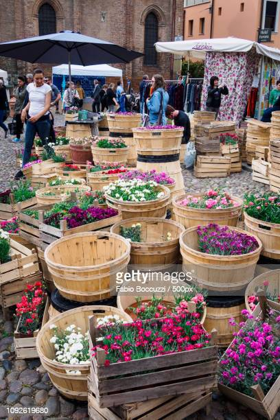 Flower market in Ferrara
