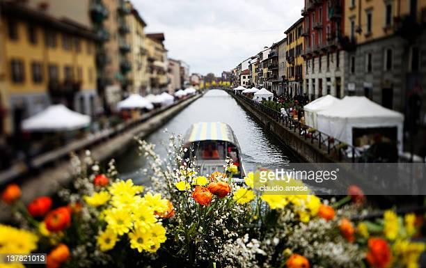 mercato dei fiori-milano. immagine a colori - navigli milano foto e immagini stock