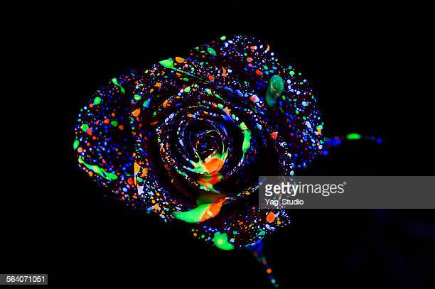 Flower on Color ink illuminating with black light