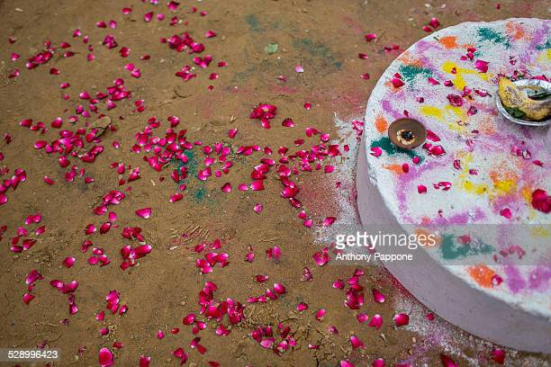 Flower petals to celebrate