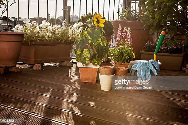 Flower Pots And Garden Tools On Balcony, Munich, Bavaria, Germany, Europe