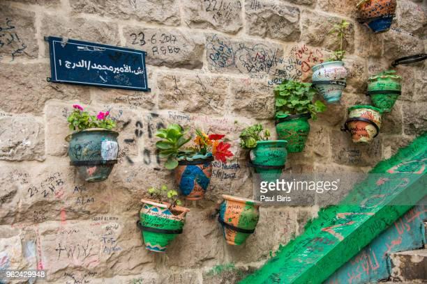 Flower pots on a wall in Amman, Jordan