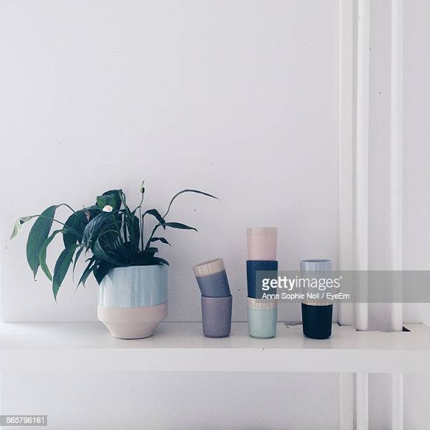 Flower Pots On Shelf