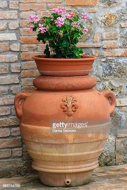 Flower pots serving as decoration, Tuscany, Italy