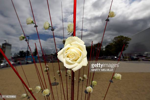 A flower sculpture to remember those lost when the CTV building collapsed in the Christchurch earthquake is seen during the fifth anniversary of the...