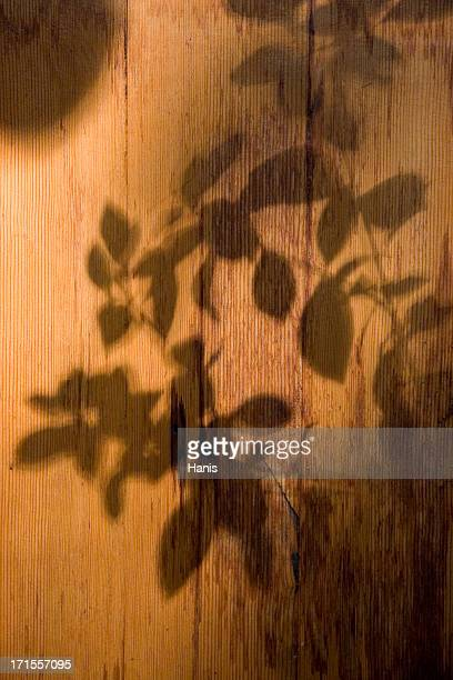 Flower shadow on wood