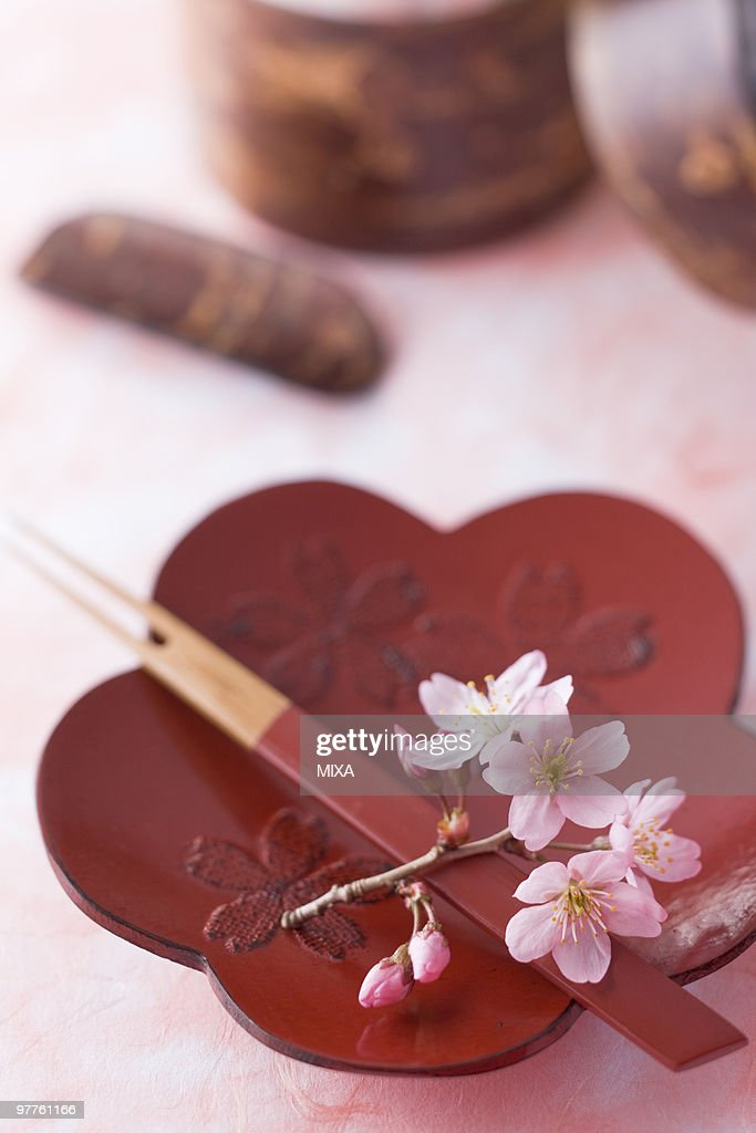 Flower shaped plate and cherry blossoms  Stock Photo & Flower Shaped Plate And Cherry Blossoms Stock Photo | Getty Images