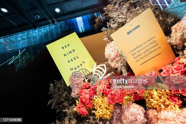 Flower Show imagery is seen from street level windows during the David Jones SS20 New Dawn Season Launch at David Jones Elizabeth Street Store on...