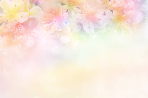 Free Mother Day Background Images Pictures And Royalty