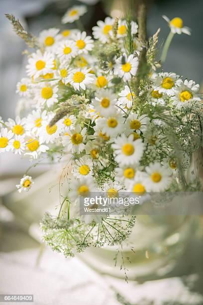 Flower vase of wild chamomile