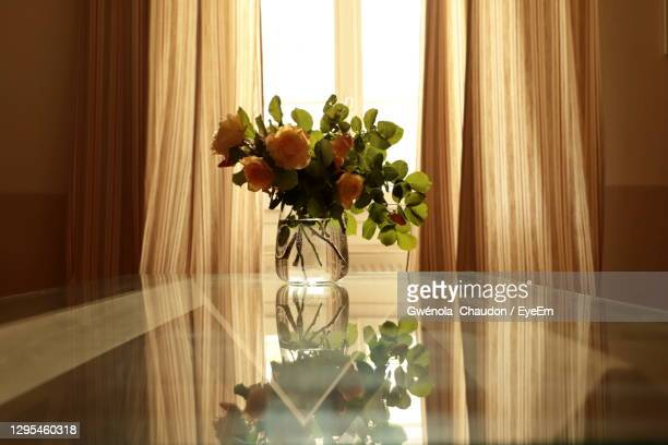 flower vase on table by window at home - magnoliophyta foto e immagini stock