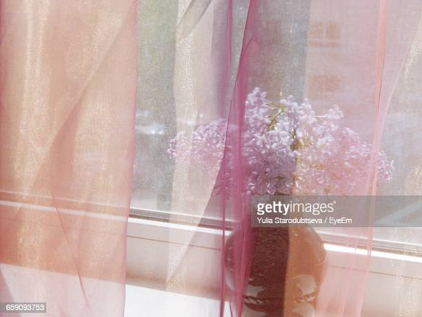 flower vase on window sill seen through curtain - translucent stock pictures, royalty-free photos & images