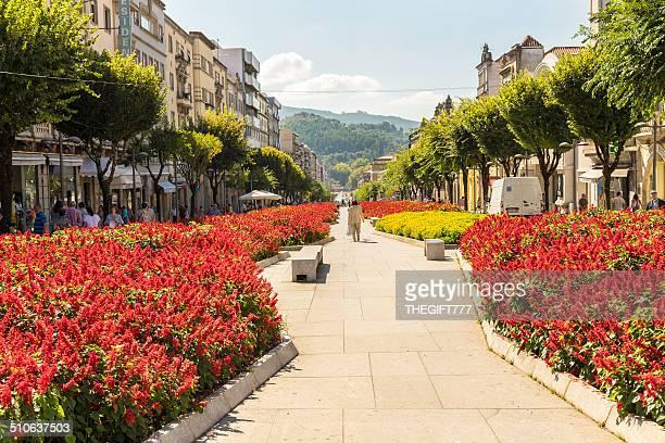 花の街の歩道 Braga (アリス・ブラガ)
