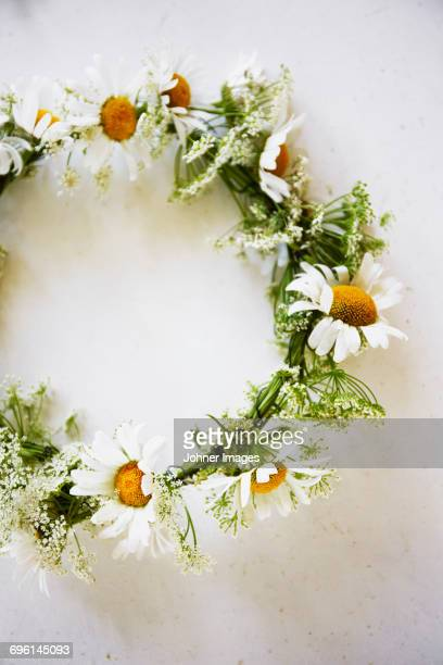 flower wreath on white background - midsommar stock pictures, royalty-free photos & images