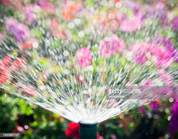 Flowerbed Automatic Water Sprinkler