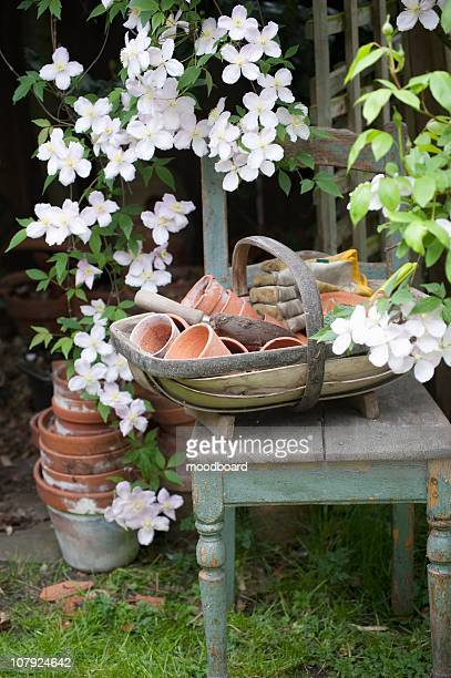 flowering clematis and garden tools - streatham stock pictures, royalty-free photos & images