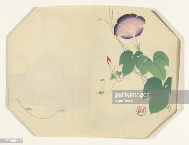 Flowering IDE, Octagonal print in album with 39 prints. Ayaoka Yûshin , Japan, 1880 - 1890, paper, colour woodcut, h 223 mm × w 287 mm.