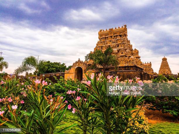 flowering plants against temple building - tamil nadu stock pictures, royalty-free photos & images
